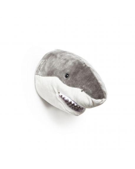 WILD & SOFT - Trophy in plush - Shark - Jack