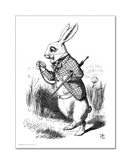 ALIBABETTE - The White Rabbit coloring