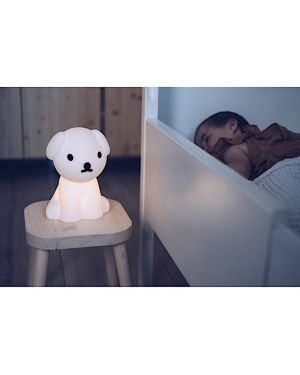 MIFFY-SNUFFY-LAMPE First Light